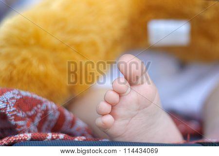 A Fragment Of A Children's Leg