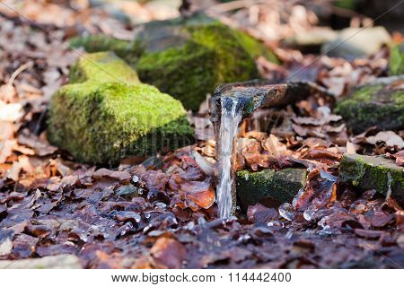 Spring with crystal clear water and pieces of ice in winter forest
