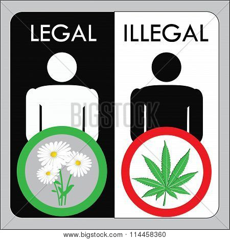Man Illegal Marijuana And Man With Legal Flowers