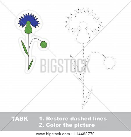 Cornflower to be traced. Vector trace game.