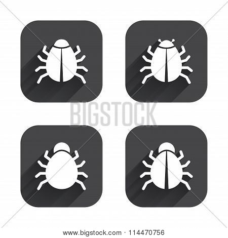 Bugs signs. Virus software error icons.