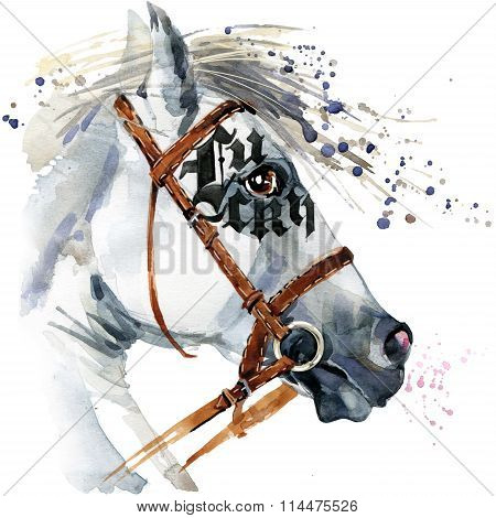 White Stallion watercolor drawing. White horse watercolor. Horse racing background. Horse harness il