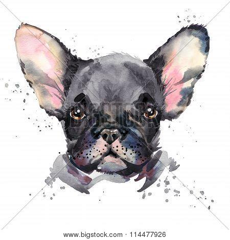 Cute dog. Watercolor puppy dog illustration. French bulldog breed.