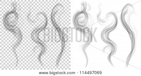 Set Of Translucent Gray Smoke. Transparency Only In Vector Format