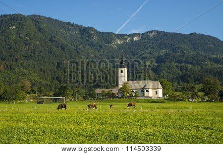 Bohinj, Jereka, Slovenia