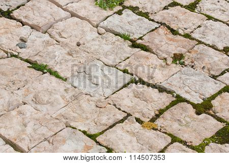 Private yard surface.Decorative stone cladding covered by moss