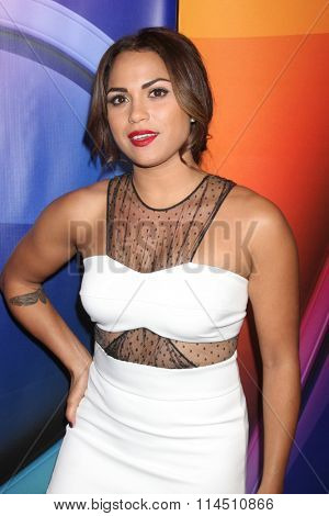 LOS ANGELES - JAN 13:  Monica Raymund at the NBCUniversal TCA Press Day Winter 2016 at the Langham Huntington Hotel on January 13, 2016 in Pasadena, CA