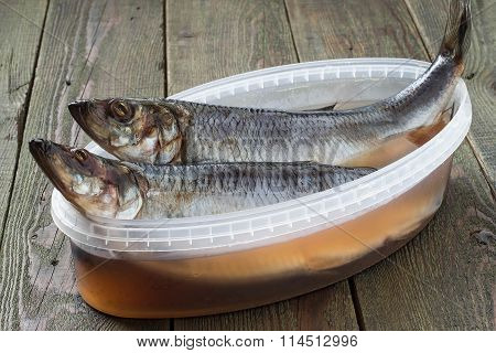 Two Salted Herring In A Container With Brine