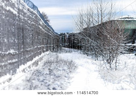 Frosty winter day. Landscape.