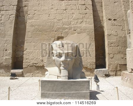 Statue Of Ramses 2 At Luxor Temple (head)