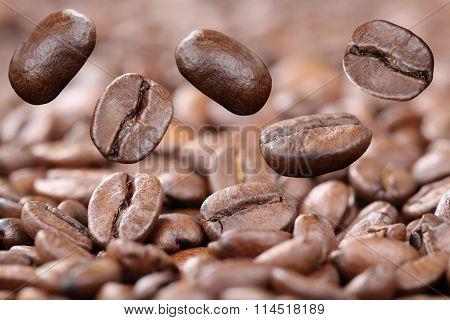 Flying Fresh Coffee Beans