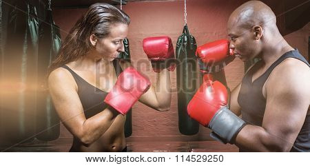 Athletes with fighting stance against punching bags in red boxing area