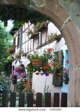Quiet French Courtyard