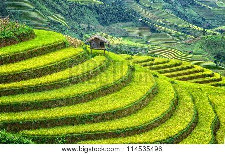Little House on the terraced fields wanderous
