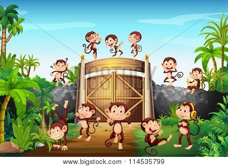 Monkeys having fun at the gate illustration