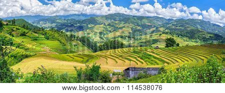 Vietnam northwestern mountains and terraced rice paddies truly majestic