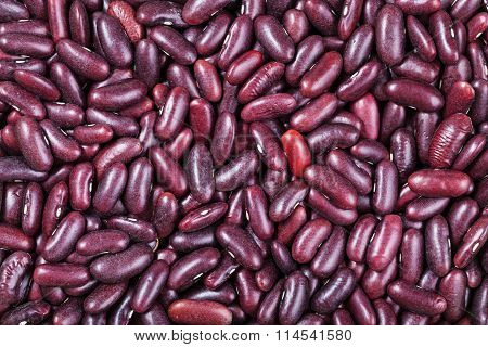 Many Raw Red Kidney Beans
