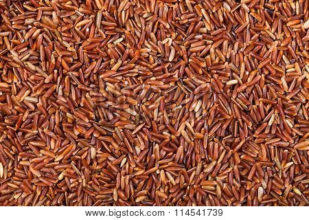 Long Grain Red Kernel Rice