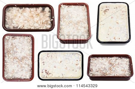 Set Of Frozen Aspics With Meat In Metal Pans