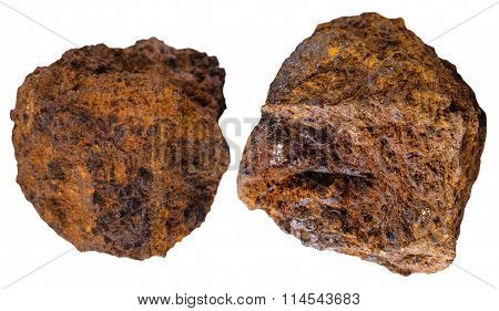 Two Pieces Brown Limonite (bog Iron Ore) Mineral