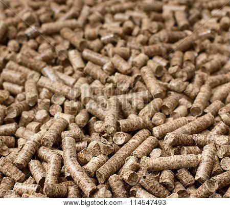 Pellets Biomass - Close Up Studio Shot