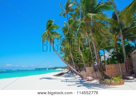 Beautiful Tropical White Sand Beach