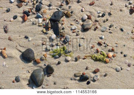 Stones And Seaweed On Sand Beach