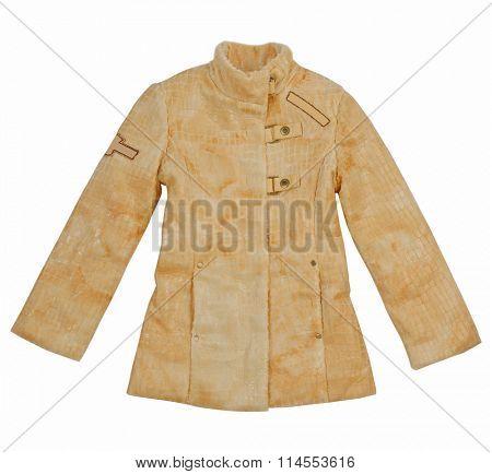 yellow jacket isolated on white background