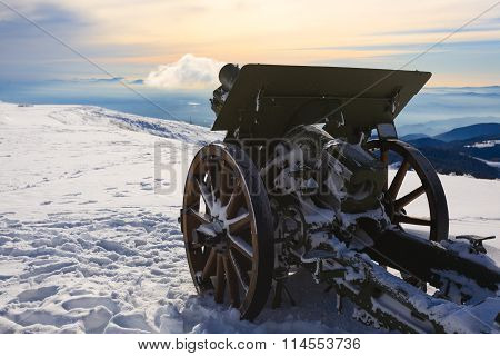 Cannon Close Up