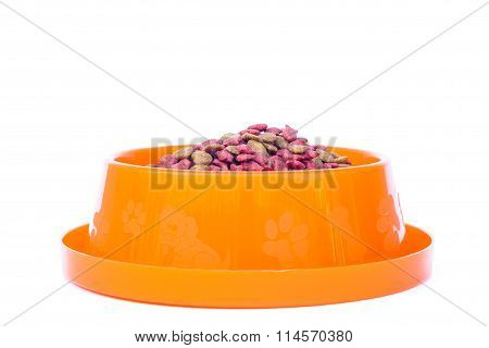 Dry Cat Food In Orange Bowl Isolated On White Background