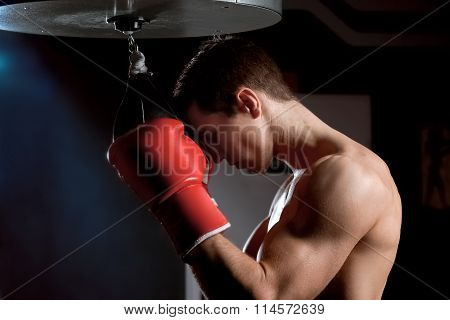 Attractive male boxer is training in gym