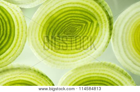 Colorful Onion and Leek Slices