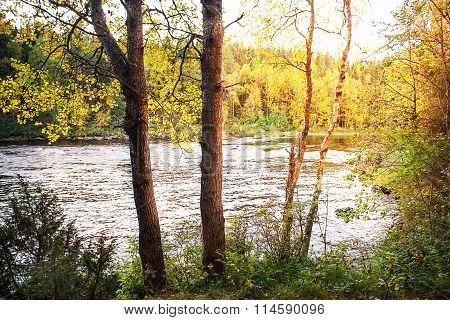 River Olanga. North Karelia. Russia. Autumn Landscape