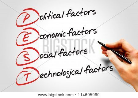 Pest Analysis Strategy