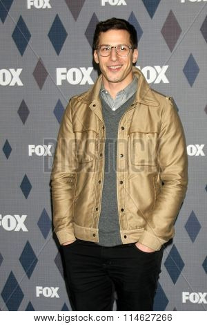 LOS ANGELES - JAN 15:  Andy Samberg at the FOX Winter TCA 2016 All-Star Party at the Langham Huntington Hotel on January 15, 2016 in Pasadena, CA