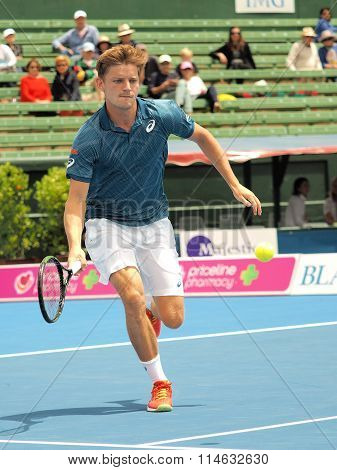 David Goffin of Belgium at an Exhibition and practice match at Kooyong Tennis Club
