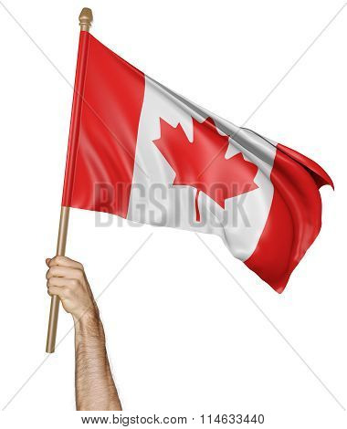 Hand proudly waving the national flag of Canada