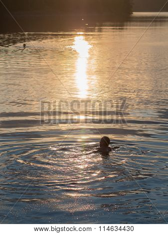 People Swimming In The Lake