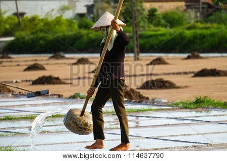 Vietnamese farmer harvesting salt