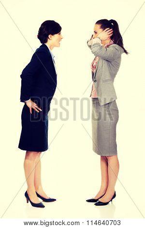 Businesswoman screaming on her partner.
