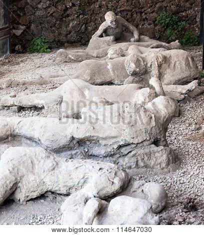 Plaster Casts In Pompei