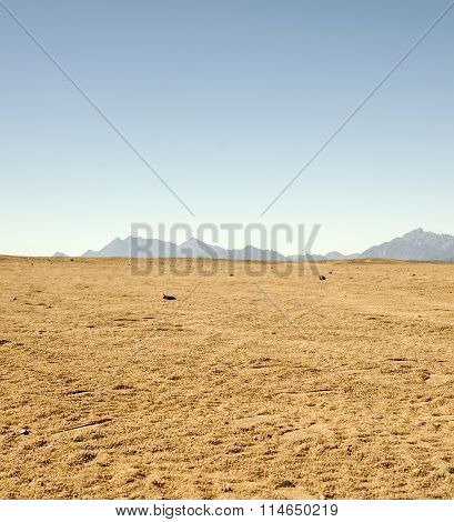 Sahara Desert Rocks And Mountains