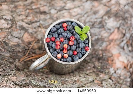 Blueberries And Red Huckleberry (cowberry) In A Metal Mug