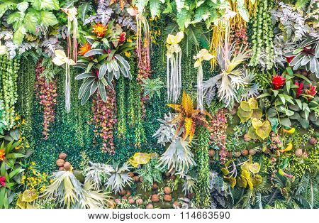 Artificial Vertical Garden Wall.