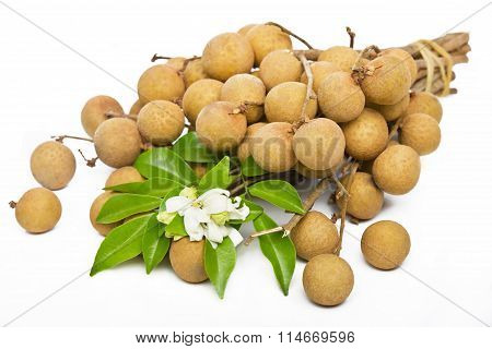 Longan on a white background