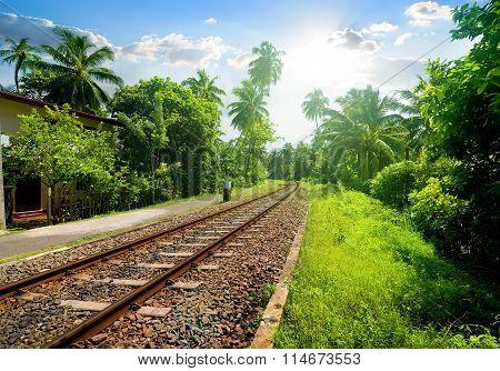 Railroad in Sri Lanka