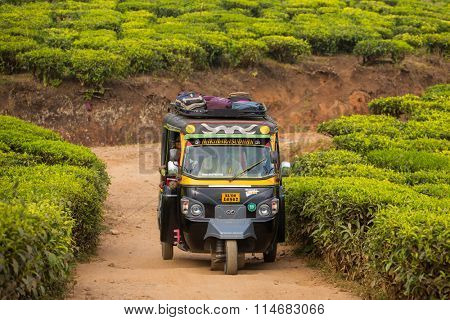 MUNNAR, INDIA - JANUARY 8: Indian Auto Rickshaw travelling through a tea plantation on January 8, 2016 in Munnar, Kerala, India.