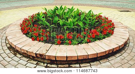 Flowerbed With Flowers