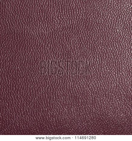 Dark red skin, streaked. Leather texture. Closeup
