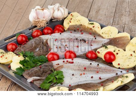 Raw Turbot Fish Ready For Cooking